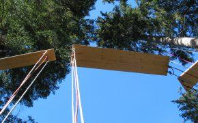 Flying Bridge - Teamperformance